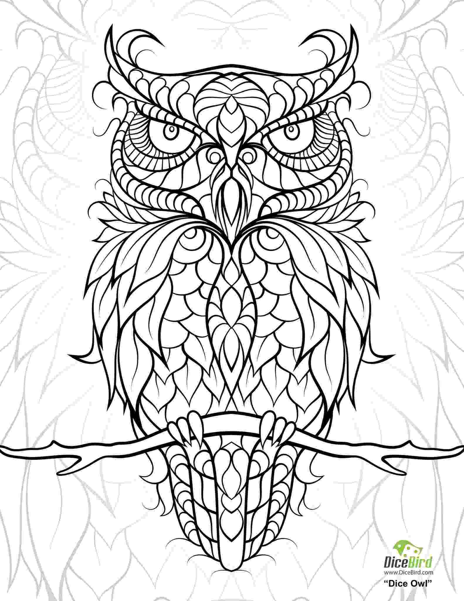 coloring pages for adults with owls diceowl free printable adult coloring pages owl coloring coloring with for owls adults pages