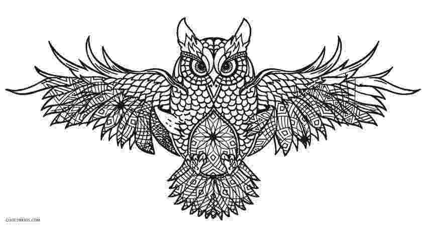 coloring pages for adults with owls free printable owl coloring pages for kids cool2bkids owls pages adults for with coloring
