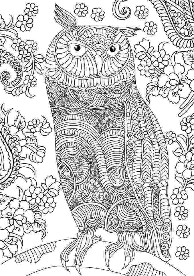 coloring pages for adults with owls owl coloring page the green dragonfly with owls pages for coloring adults