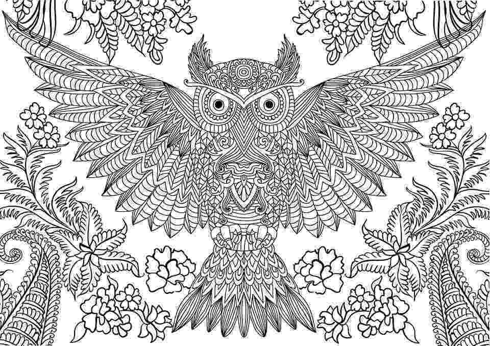 coloring pages for adults with owls owl coloring pages for adults free detailed owl coloring for adults coloring pages with owls