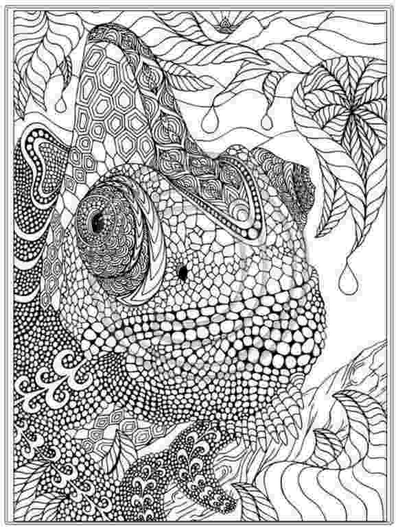 coloring pages for young adults coloring pages related adult coloring pages item adult adults pages coloring young for