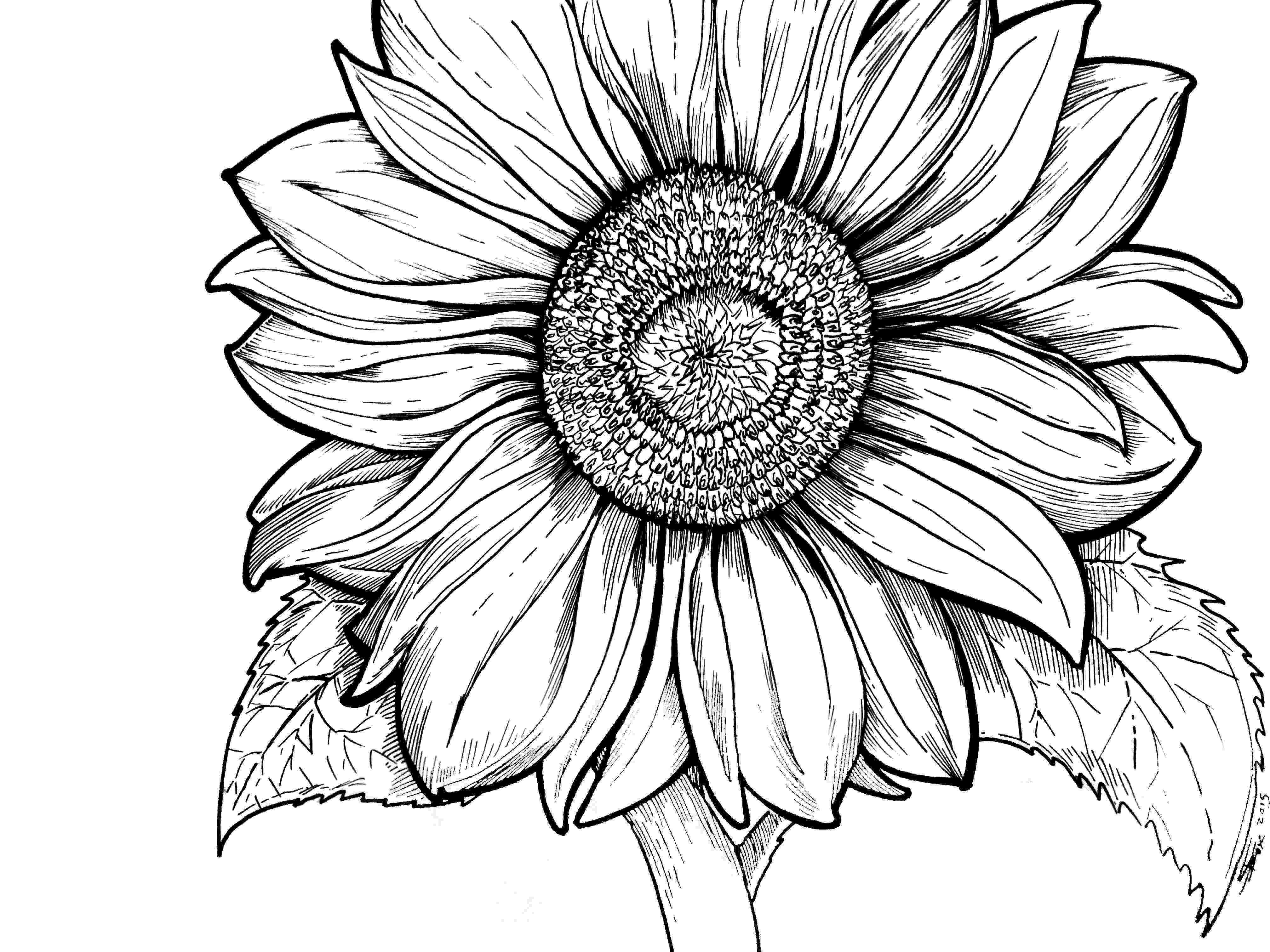 coloring pages for young adults if you love to color to unwind from the stresses of your adults pages coloring young for