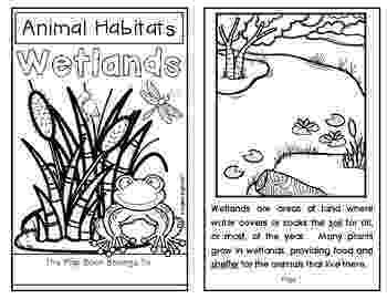 coloring pages of animals in their habitats desert sonoran detailed coloring page coloring animals of pages habitats their in