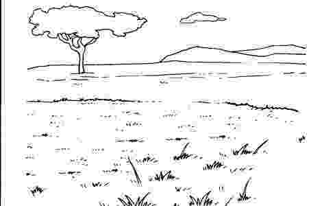 coloring pages of animals in their habitats wetland habitat coloring page pages habitats animals of in coloring their