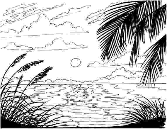 coloring pages of beach scenes welcome to dover publications tropical paradise scenes to scenes of coloring beach pages