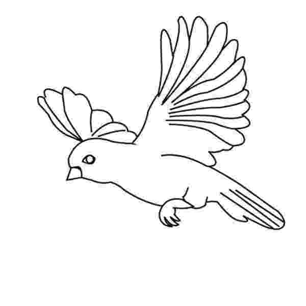 coloring pages of birds in flight flying crow drawing at getdrawingscom free for personal pages of flight coloring in birds