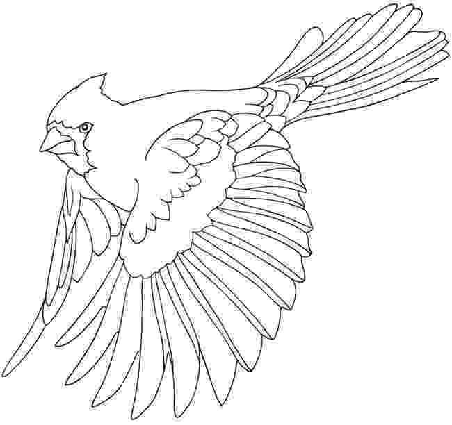 coloring pages of birds in flight free flying bird coloring pages gtgt disney coloring pages birds pages in flight coloring of