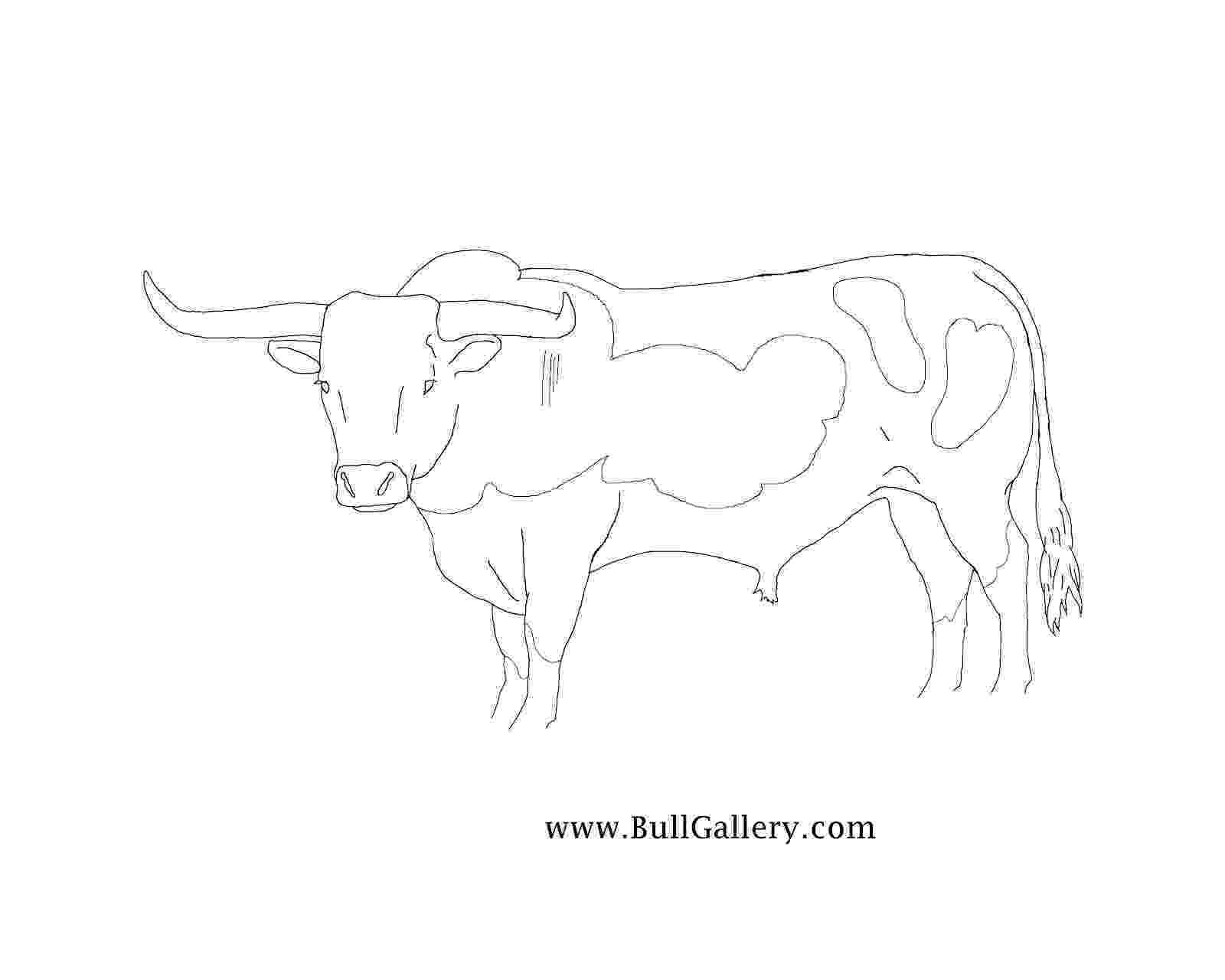 coloring pages of bull riding bull riding coloring pages surfnetkids bull pages riding coloring of