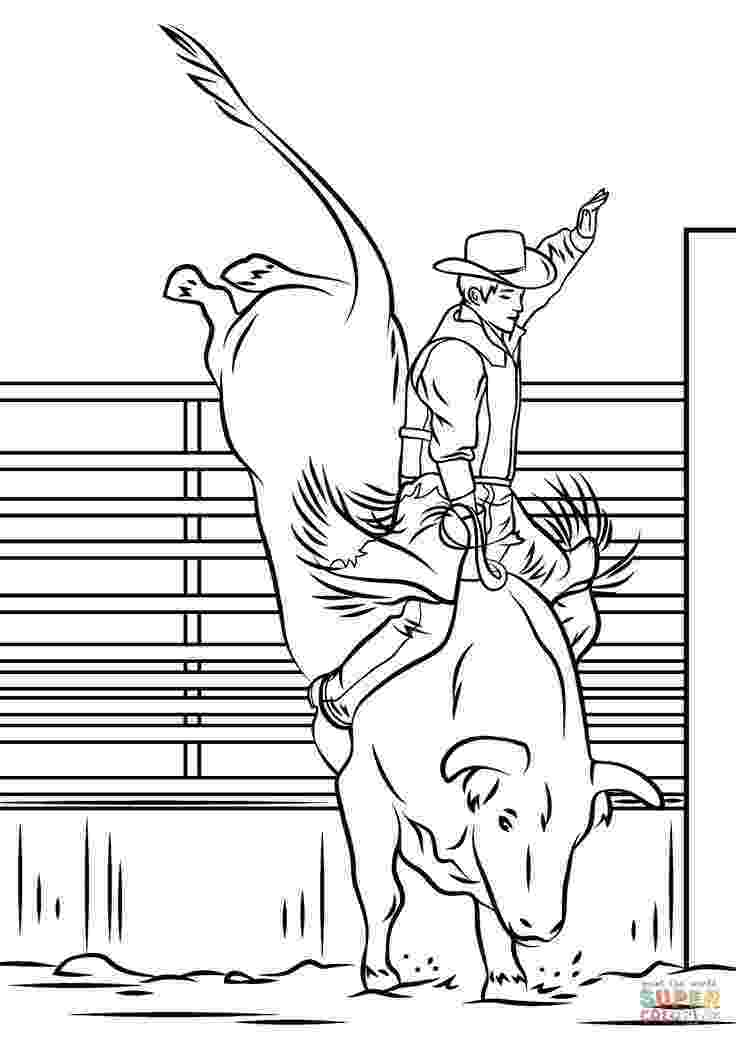 coloring pages of bulls bull coloring pages to download and print for free bulls pages coloring of