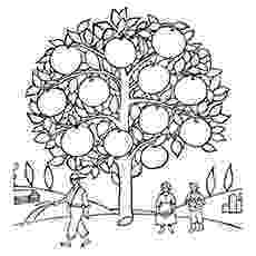 coloring pages of fruit trees 10 best orange coloring pages for toddlers of fruit coloring trees pages