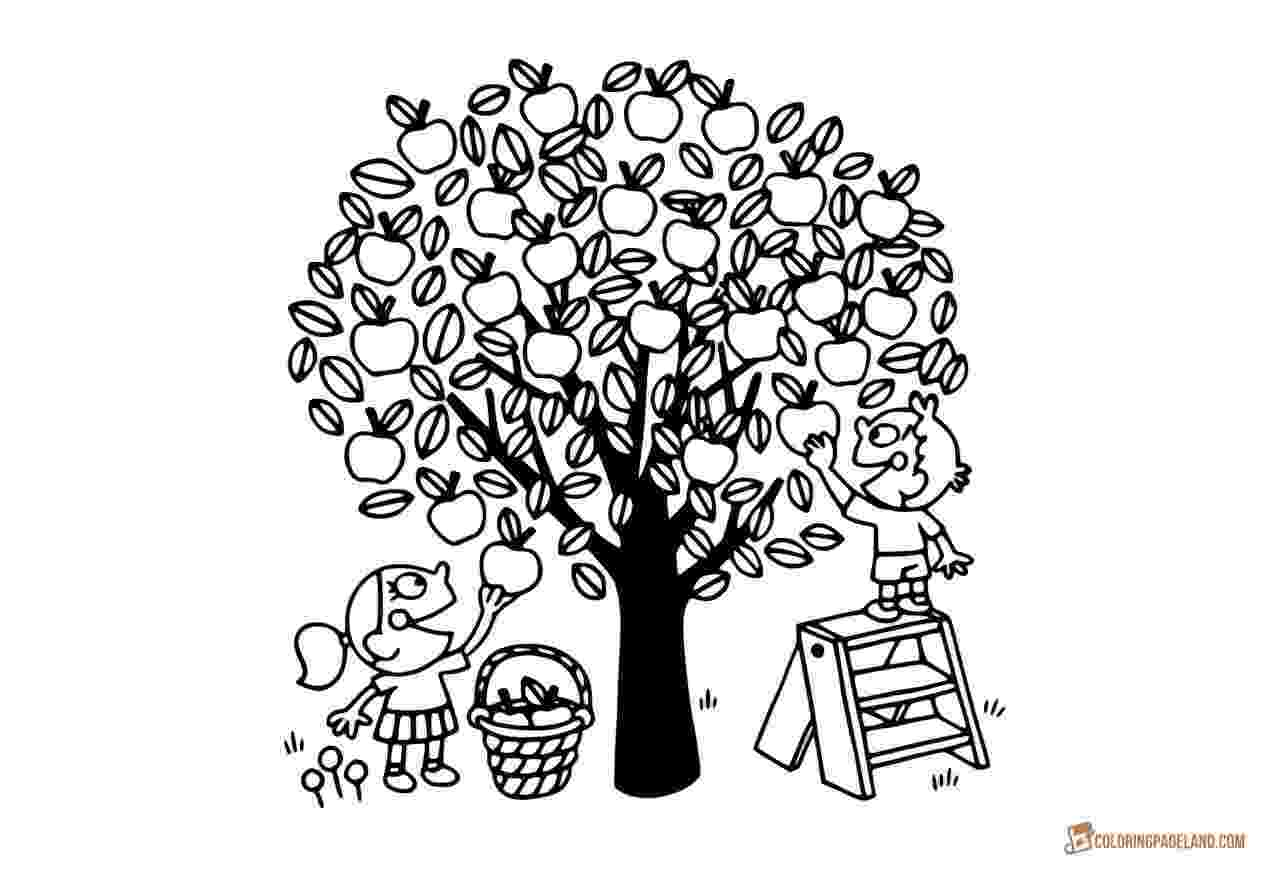 coloring pages of fruit trees apple tree coloring pages downloadable and printable trees pages fruit coloring of