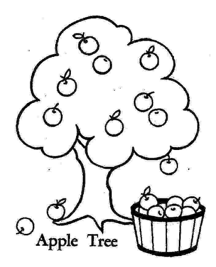 coloring pages of fruit trees apple tree pictures to color coloring home trees pages fruit coloring of