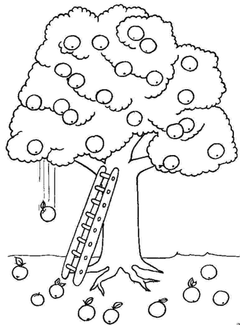 coloring pages of fruit trees banana tree fruit coloring page for kids fruits coloring fruit trees of pages