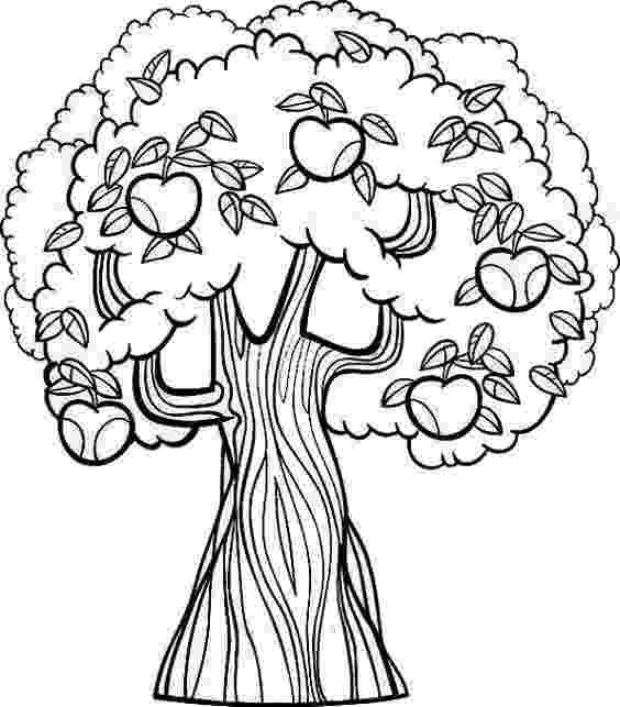 coloring pages of fruit trees free trees coloring pages printable trees coloring pages fruit trees of coloring