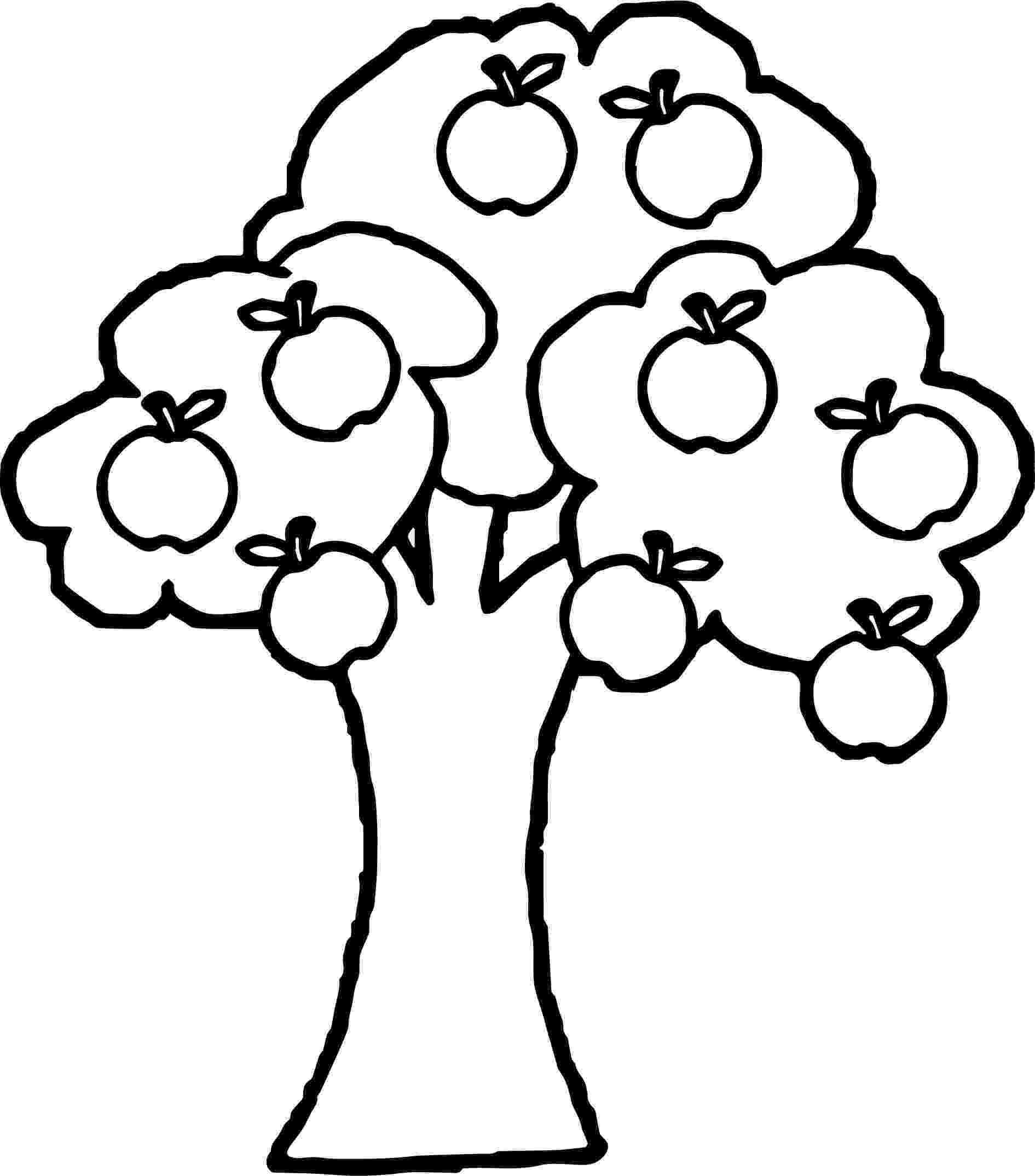 coloring pages of fruit trees fruit tree coloring page at getcoloringscom free fruit coloring of trees pages