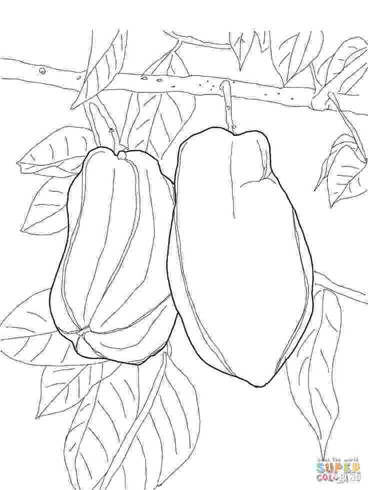 coloring pages of fruit trees fruit tree coloring page at getcoloringscom free pages trees of fruit coloring
