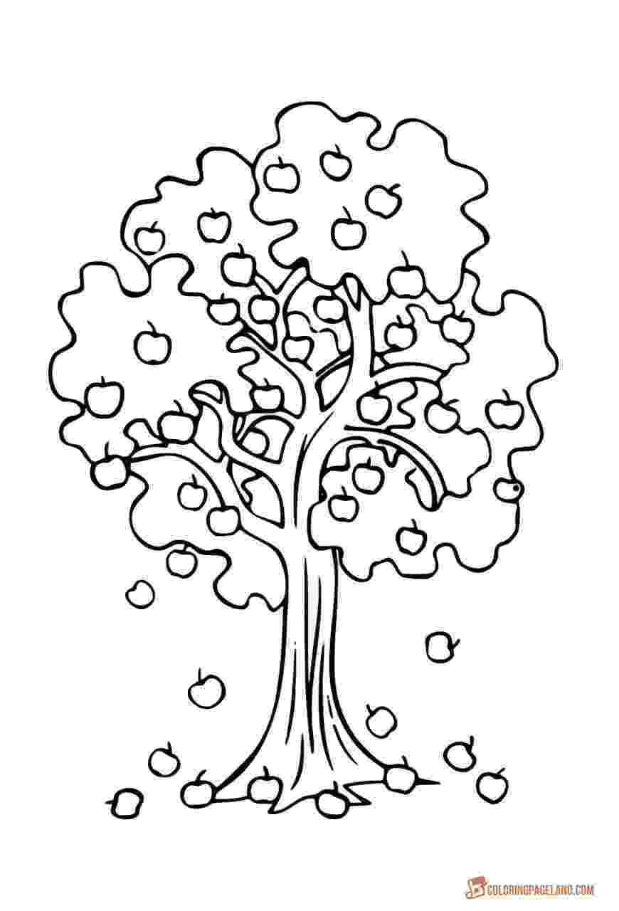 coloring pages of fruit trees fruit tree coloring page food pinterest fruit trees trees pages of fruit coloring