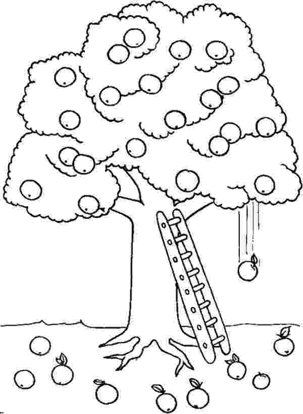 coloring pages of fruit trees fruit tree drawing at getdrawingscom free for personal of coloring pages trees fruit