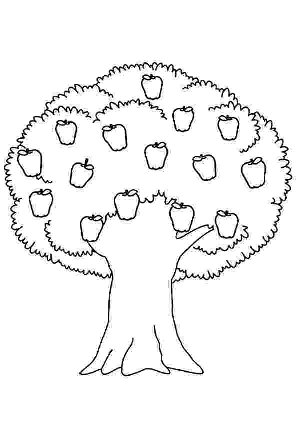 coloring pages of fruit trees girl and apple tree coloring page for kids fruits trees fruit pages of coloring