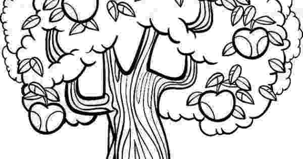coloring pages of fruit trees mandarin orange tree fruit coloring page for kids fruits coloring of fruit pages trees