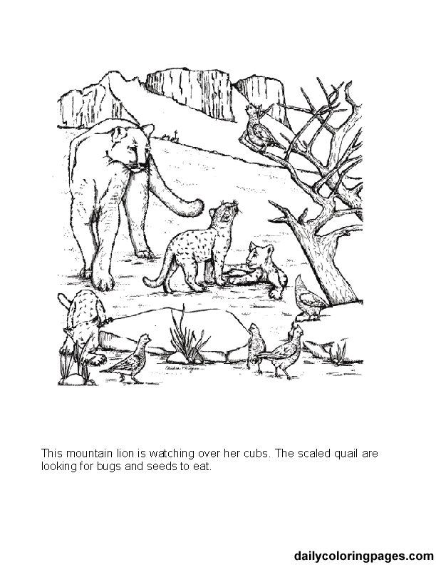 coloring pages of mountains mountain top coloring page coloring book coloring pages of mountains