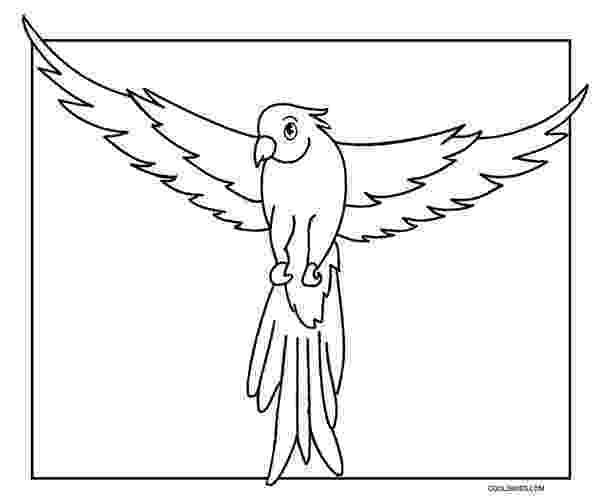 coloring pages of parrots kostenlose vogel ausmalbilder ausmalvorlage zum vogel of pages coloring parrots