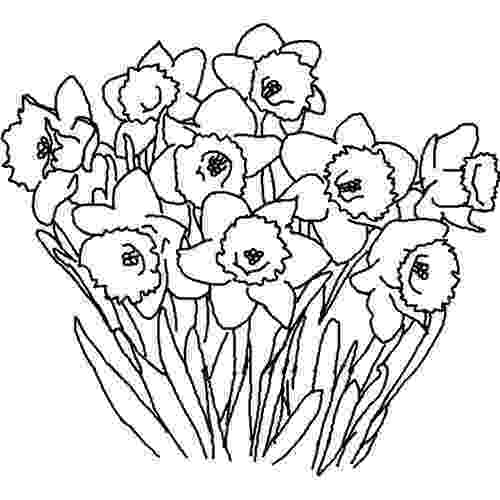 coloring pages of spring flowers many spring flowers coloring page for kids seasons coloring flowers spring of pages