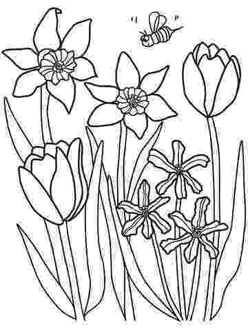 coloring pages of spring flowers spring flowers coloring page free printable coloring pages coloring of pages spring flowers