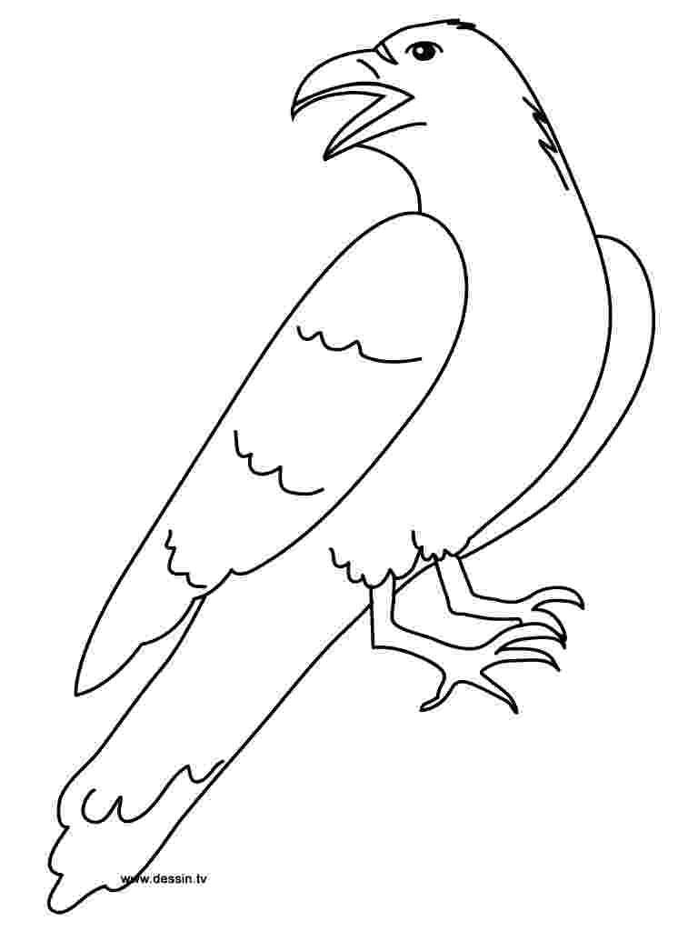 coloring pages raven coloring raven coloring raven pages