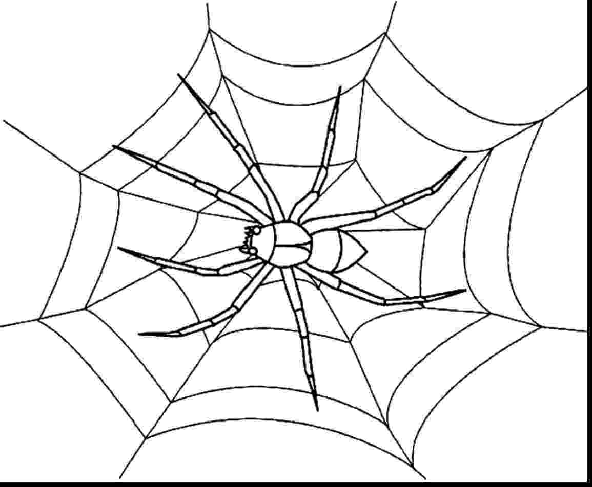 coloring pages websites spider web coloring pages get coloring pages coloring pages websites