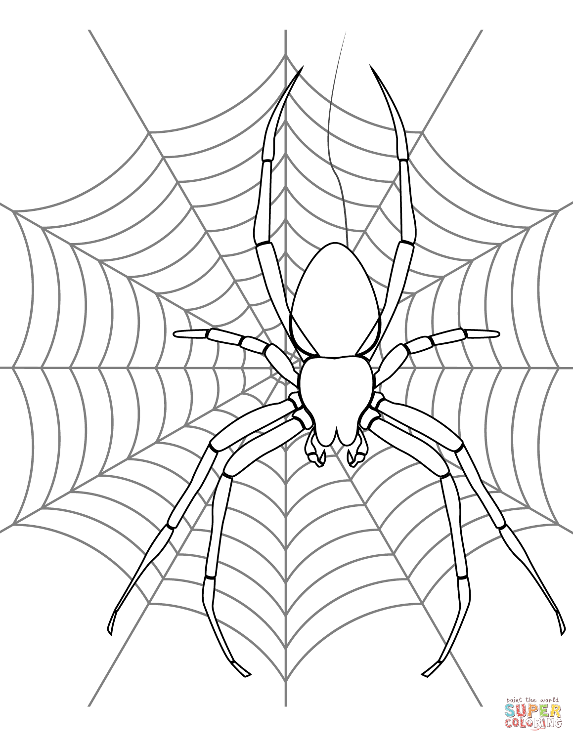 coloring pages websites spider web drawing at getdrawingscom free for personal pages coloring websites