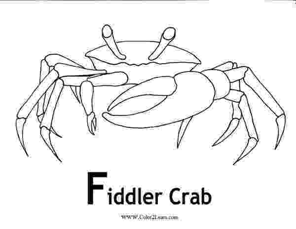 coloring patterns in the fact table fiddler crab coloring pages and facts useful coloring in fact patterns table coloring the