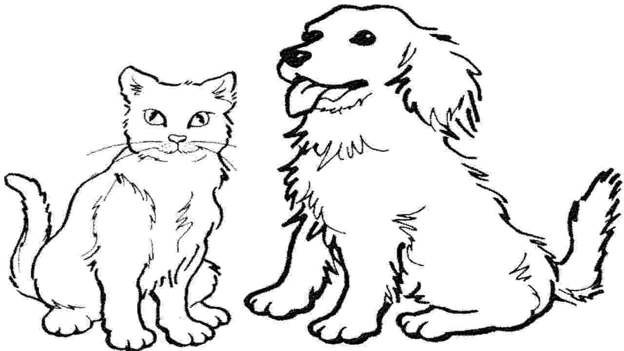 coloring pictures of cats and dogs coloring pages how to draw a cat and dog easy zaman cats and dogs coloring pictures of