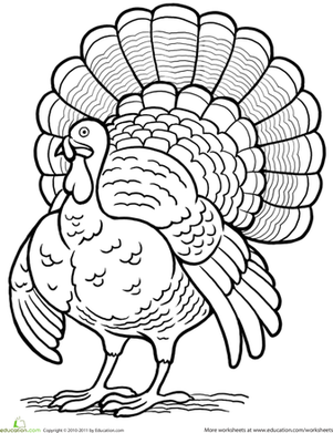 coloring turkey cool thanksgiving turkey coloring page free printable turkey coloring