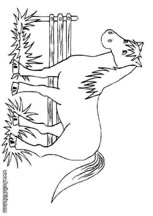 colouring horse free horse coloring pages horse colouring