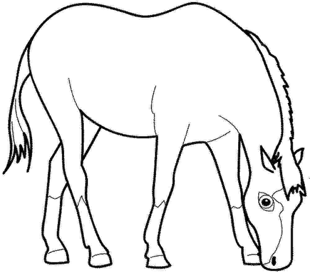 colouring horse horse coloring pages team colors colouring horse