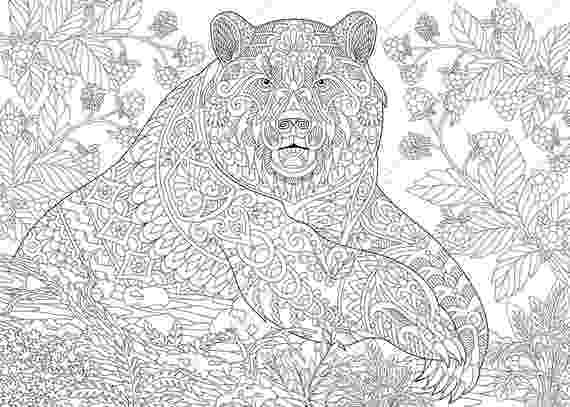 colouring pages adults grizzly bear coloring pages animal coloring book pages adults colouring pages