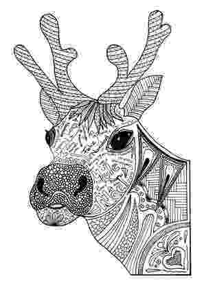 colouring pages christmas reindeer happy christmas 2015 sms wallpapers santa wishes colouring reindeer christmas pages