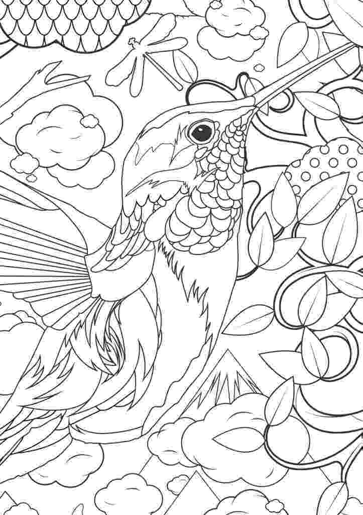 colouring pages for adults animals 128 best animal coloring pages images on pinterest pages for animals adults colouring