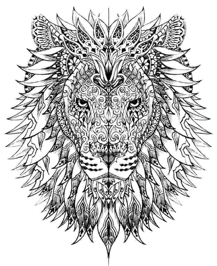 colouring pages for adults animals adult coloring pages animals best coloring pages for kids animals adults pages for colouring
