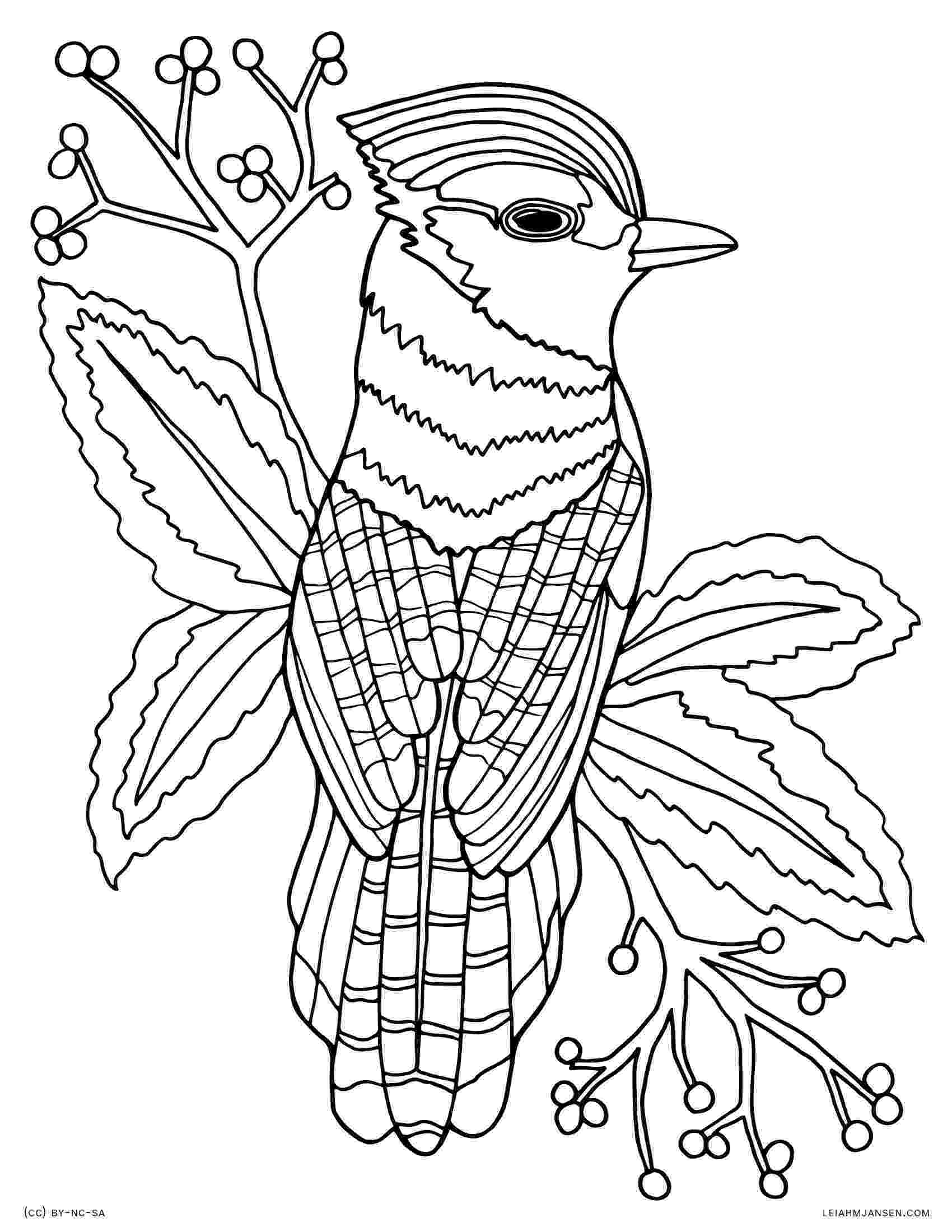 colouring pages for adults animals animal coloring pages pdf free adult coloring pages colouring adults animals pages for