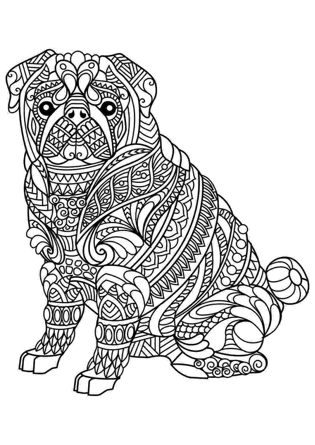 colouring pages for adults animals coloring pages adults colouring for animals pages