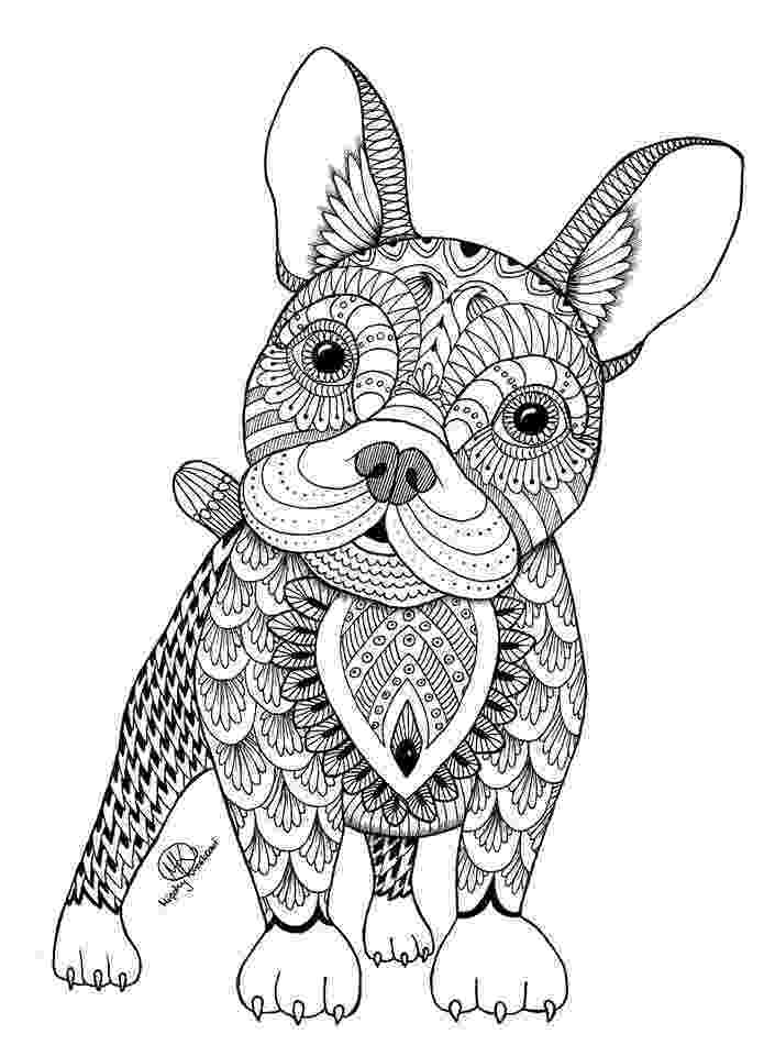 colouring pages for adults animals coloring pages animals for adults free download on animals colouring for adults pages