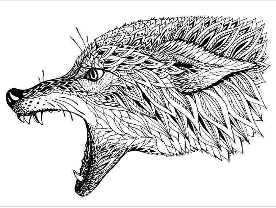 colouring pages for adults animals zentangle squirrel squirrels rodents adult coloring pages pages for animals colouring adults