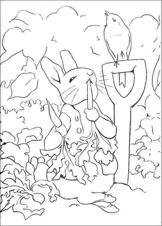 colouring pages for peter rabbit printable rabbit coloring pages for kids cool2bkids for peter rabbit colouring pages