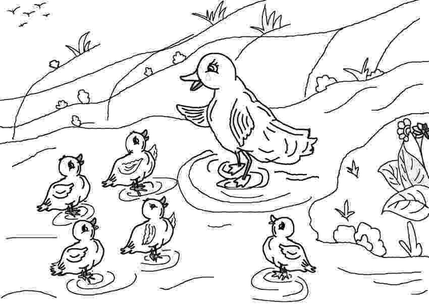 colouring pages for the ugly duckling the ugly duckling coloring page coloring home ugly duckling colouring pages for the