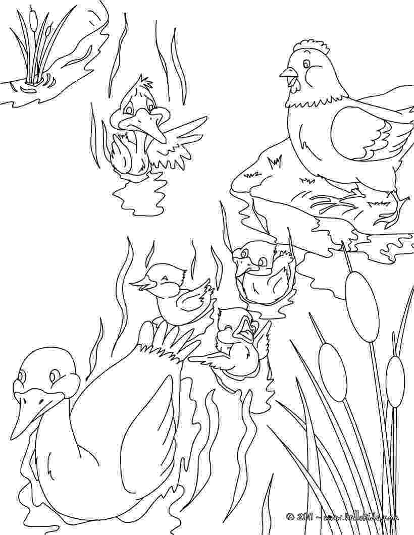 colouring pages for the ugly duckling ugly duckling6 the for ugly colouring pages duckling