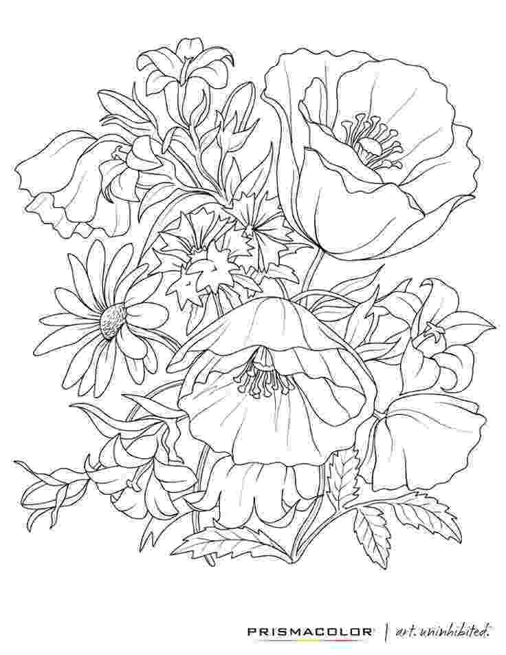 colouring pages of beautiful flowers beautiful printable flowers coloring pages pages colouring flowers beautiful of