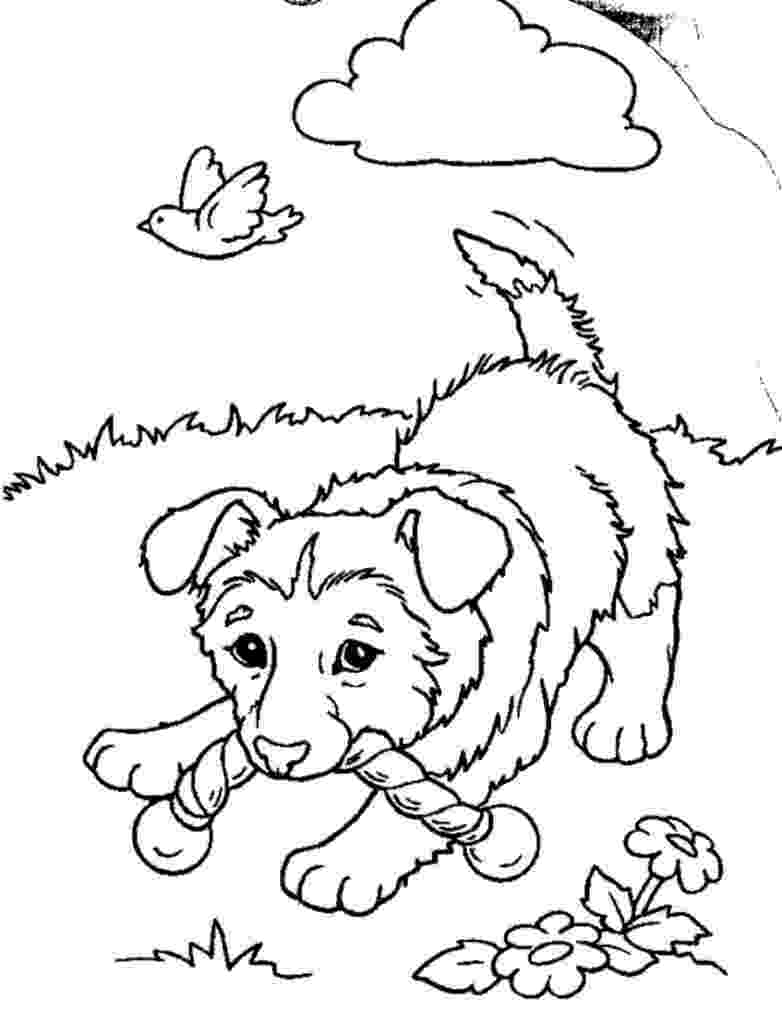 colouring pages puppies printable puppy coloring pages for kids cool2bkids puppies pages colouring 1 1
