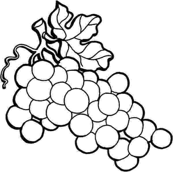 colouring pictures of grapes food and drink colouring pages colouring grapes pictures of